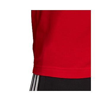 Adidas Essentials Linear FM6223 universal summer men t-shirt