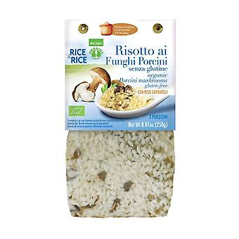 Porcini mushroom risotto - with miso 250 g