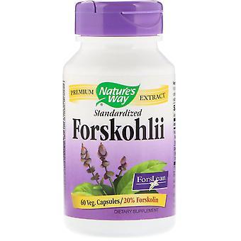 Nature-apos;s Way, Forskohlii, Standardisé, 60 Capsules veg.
