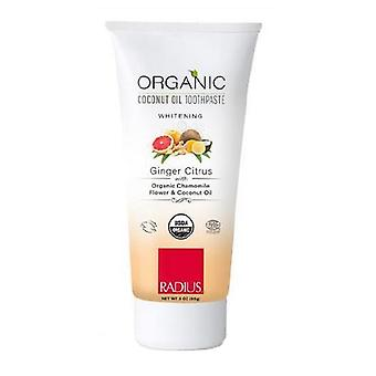 Radius Toothbrushes Organic Toothpaste, Dragon Frosted Child 3Oz