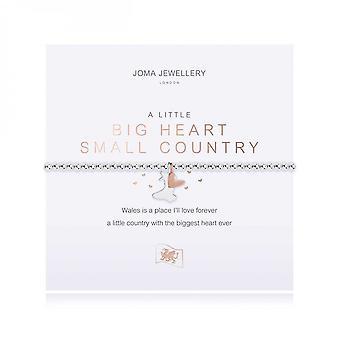 Joma Sieraden Een beetje groot hart klein land zilver 17,5 cm stretch armband 4013