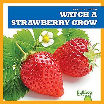 Watch a Strawberry Grow (Watch It Grow)