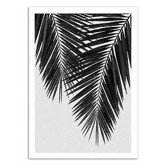 Art-Poster - Palm Leaf Part 3 Black and White - Orara Studio 50 x 70 cm