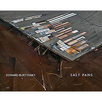 Edward Burtynsky - Salt Pans - Little Rann of Kutch - Gujarat - India b