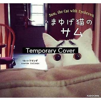Sam, o Gato com Sobrancelhas por Amanda Collado
