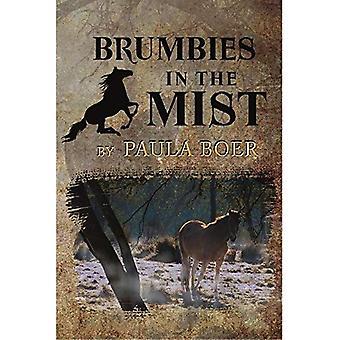 Brumbies in the Mist (Brumbies)