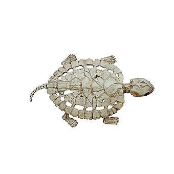 Turtle Skeleton
