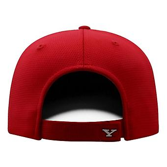 Youngstown State Penguins NCAA TOW tan limpio sombrero ajustable