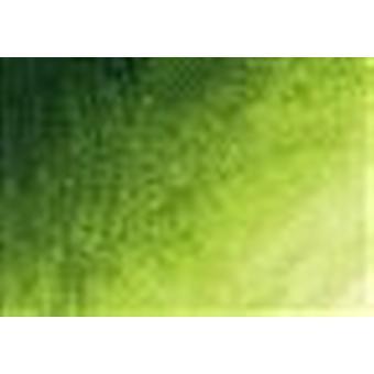 Bob Ross Landscape Painting Oil Colours 37ml - Sap Green
