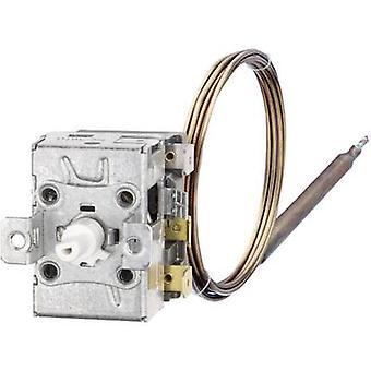 Jumo 602030/01 thermostaat 20 tot 90 ° C (L x W x H) 42 x 36 x 46 mm