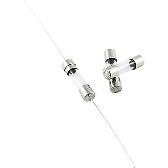 ESKA 520609 mikro sikring (Ø x L) 5 x 20 mm 0,16 A 250 V Quick svar - F-innhold 10 eller flere PCer