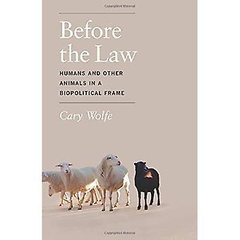 Przed prawem: ludzie i inne zwierzęta w ramce biopolitycznego urządzania