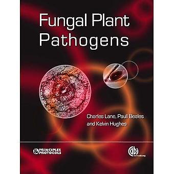 Agents pathogènes fongiques des plantes