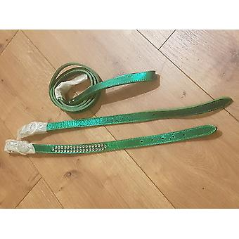 Green Leather Dog Collar matching Lead Set
