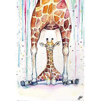 Marc Allante, Maxi Poster - Gorgeous Giraffes