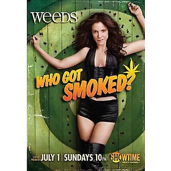 Weeds - Weeds: 8 ª temporada [DVD] EUA importar