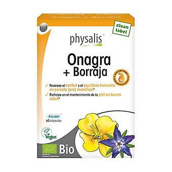 Teunisbloem en Borage Bio 60 capsules
