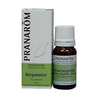 Bergamott Essential Oil - skal 10 ml eterisk olja