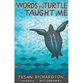 Words the Turtle Taught Me