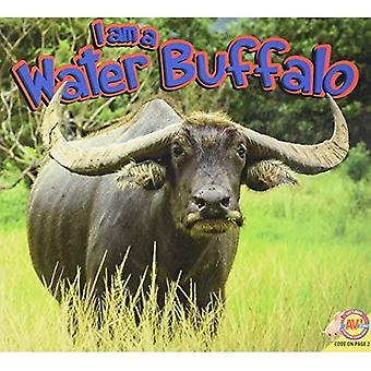 Waterbuffel (ben)