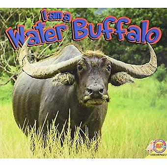 Water Buffalo (I Am)