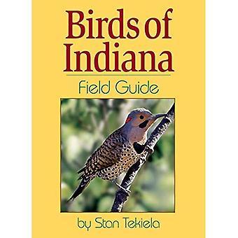 Birds of Indiana Field Guide (Guides de terrain)