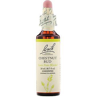 Bach, Original Flower Remedies, Chestnut Bud, 0.7 fl oz (20 ml)