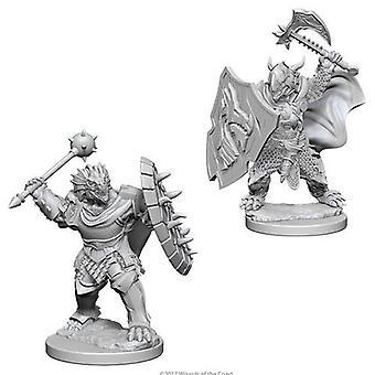 D&D Nolzur's Maravillosas miniaturas sin pintar Dragonborn Man paladín macho (paquete de 6)