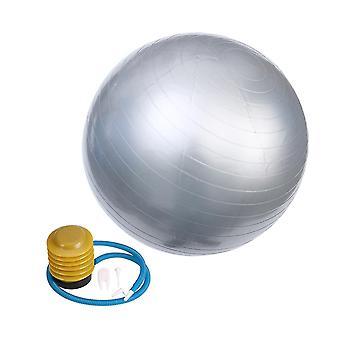 65X65cm الفضة 65cm 800g المهنية المضادة للانفجار استقرار الكرة اليوغا موازنة devcie ممارسة أداة dt2758