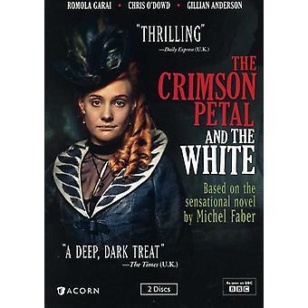 Crimson Petal & the White [DVD] USA import