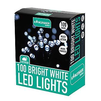 Eisvogel 100 LED Bright White Xmas Christmas Lights