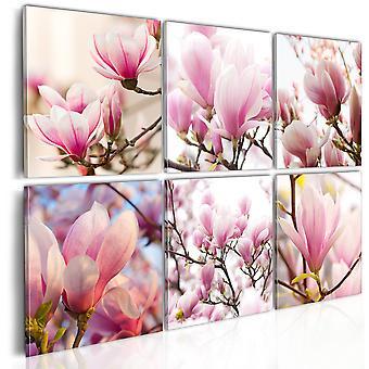 Panza de imprimare-Magnolias de Sud