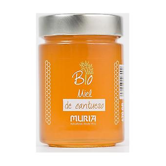 Organic Honey Cantueso 470 g