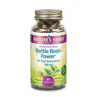 Nature's Life Nettle Root Power, 60 Caps