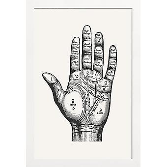 JUNIQE Print - Palmistry - Retro & Vintage Plakat w kolorze szarym & białym