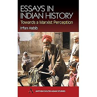 Essays in Indian History (South Asian Studies Series): Towards a Marxist Perception