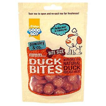 يعامل جيدة بوي--بطة لدغ الكلب