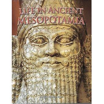 Livet i antika Mesopotamien (bemannar i den antika världen)