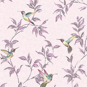 Sparkle Hummingbird Wallpaper Fine Decor