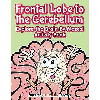 Frontal Lobe to the Cerebellum Explore the Brain By Mazes Activity Book by Jupiter Kids