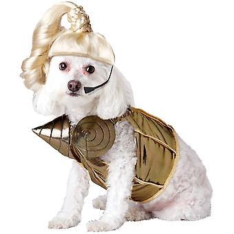 Pop Star sällskapsdjur klädedräkt