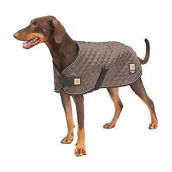 Thermal valjaat tikattu koira kuorruttaa