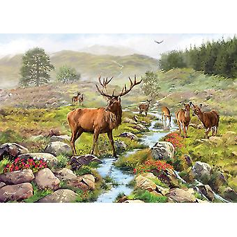 Otter House National Park Jigsaw Puzzle (1000 Pieces)