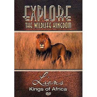 Lions-Kings of Africa [DVD] USA import