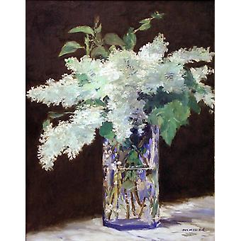 White Lilac,Edouard Manet,54x42cm