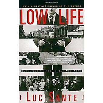 Low Life - Lures and Snares of Old New York Book