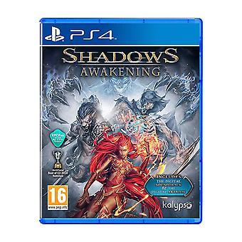 Shadows Awakening PS4 Game