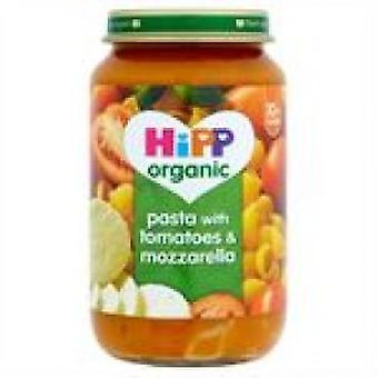 هيب-الطماطم المكرونة & موزاريلا (10 +)