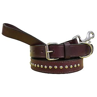 Bradley crompton genuine leather matching pair dog collar and lead set bcdc16purple
