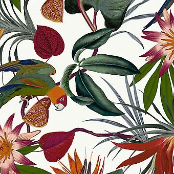 Superfresco Easy Parrot Wallpaper White Graham and Brown 108601